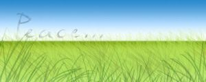 grass by TEOxan