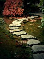 Garden Stepping Stones by Fang-Jie