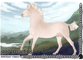999 Invictus by NorthEast-Stables