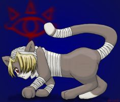 Sheik Kitty by rydiahighwind