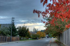Firtree Dr by J-A-Y-E