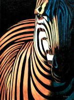 Zebra'original acrylic on canvas painting and quo by vicvill