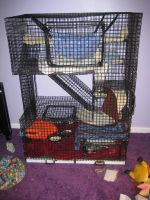 Ferret Cage by Autumn1083
