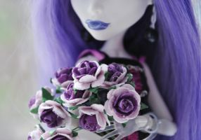 Violet roses for you by ItSurroundsMe