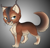 Sparrowpaw of ShadowClan by Dacowtippa