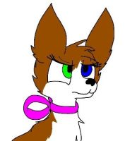 Melody the papillon by Cheedo6