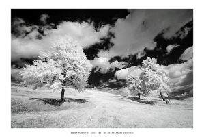 Snow White Hill by DimensionSeven