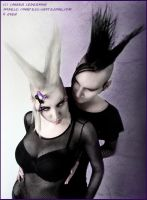 . double bi hawks . by Countess-Grotesque