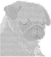 Matteo ASCII by diamondie