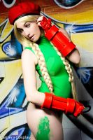 Micro Kitty Cammy 11 by CanteraImage