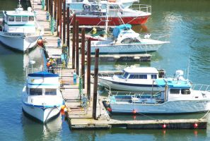 Boats in the Harbor by Stolte33