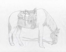 Grazing Horse by Chick-with-a-pencil
