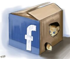 face cat in the box by daronzo83