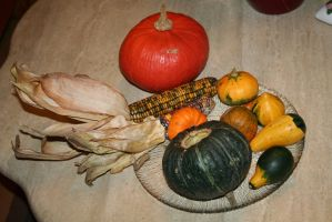 pumpkins and corn I bought by ingeline-art
