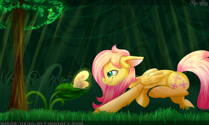 Fluttershy and Butterfly by AlenD-nyan