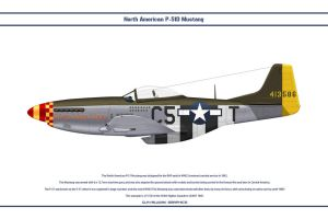 Mustang USAAF 364th FS 3 by WS-Clave