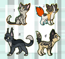 Kitten adoptables 3 | OTA | CLOSED by DaisiesAdopts