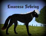 Introducing: Emarosa Sebring by Aucella