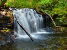 Ricketts Glen State Park 46 by Dracoart-Stock