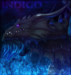 Indigo (Flight Rising) by NinjaKato
