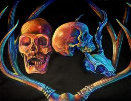 Subjective Color Skull Study by MachineGun-Baby