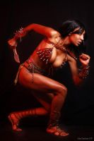 Warrior Woman by PavSys