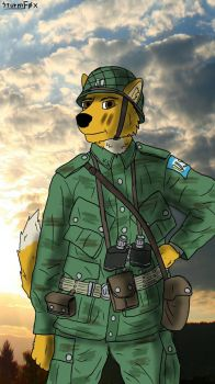 US Paratrooper by SturmFox