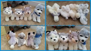 Various Small Canine plush! 7in by Vesperwolfy87