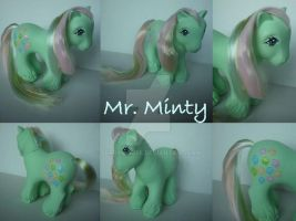 My little Pony Custom  ~ G1 Mr. Minty by BerryMouse