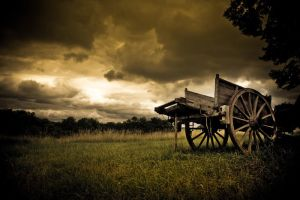 Old Cart by Phil-Norton