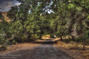 Straight Ahead by pacmangeek