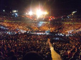 UFC 110 Crowd 2 by Shame-On-The-Night