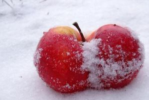 red apple by Charley17