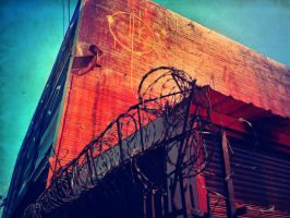 Barbed Wire by Izzie-Hill