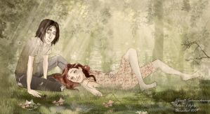 DH Memory by Lily-Atelier