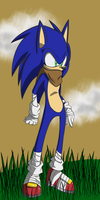 Sonic boom Sonic by rouge2t7