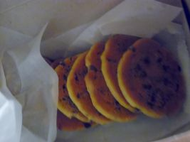 Chocolate Chip Cookies by TheWizardofOzzy