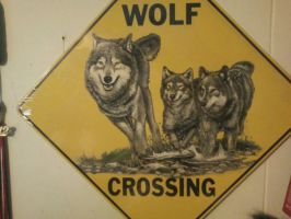 WOLF CROSSING by AmericanWolf016