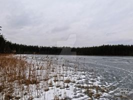 Frozen Lake in Estonia by ChemaIllustration