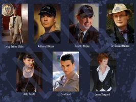 NCIS Wall by GothPoetGirl
