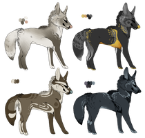 canine adopts.04 CLOSED by coyotesoot