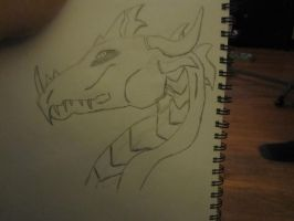 Dragon 1 Sketchbook drawings 2 by Doom-Wulf