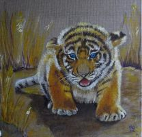 The Little Tiger by SAMANTHA58