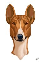 Basenji Caricature by CharReed
