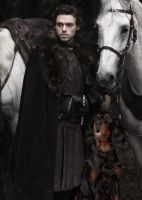 Robb Stark and His Daemon by LJ-Todd