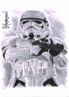 Stormtrooper by Quadcabbage