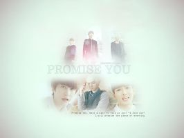 promise you wallie by haihachinadolls
