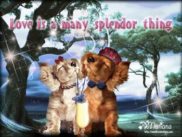 Love is a splendor thing by marifre