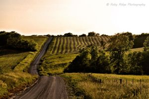 Visit - Countryside by RobyRidge