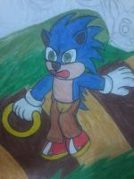 Sonic in Kung Fu Panda style by LotDarkos